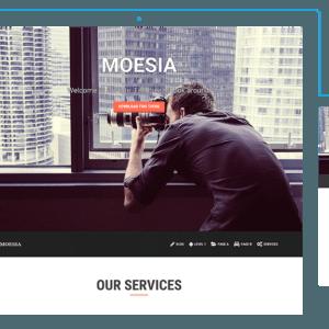 Moesia WP Theme